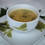 Sopa de Urtigas 1º Prémio